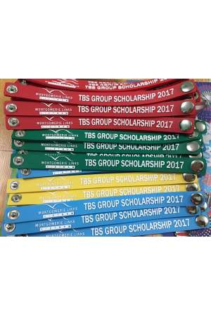TBS Group Scholarship 2017